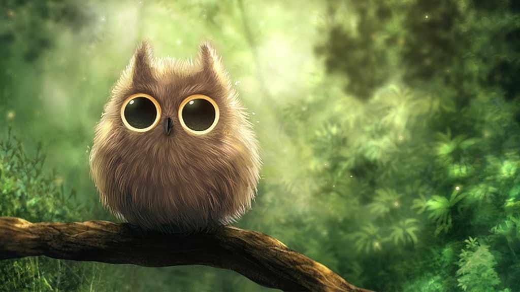 Cute Owl – screenalicious :: แหล่งรวม wallpaper ภาพคมชัด